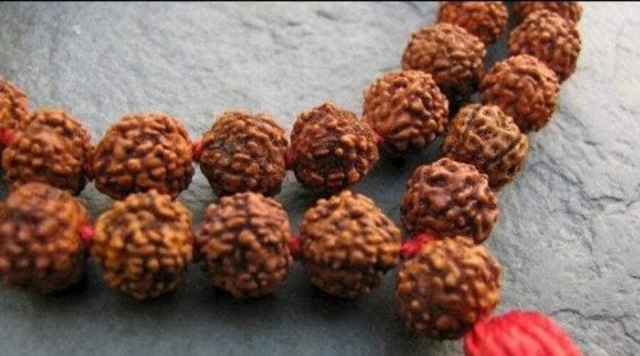 Influence of Rudraksha for a successful life Journey with Spiritual Fulfillment
